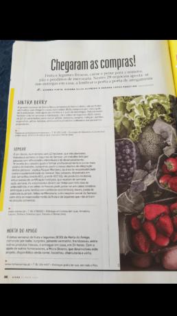 Semear na Media - Revista Visão